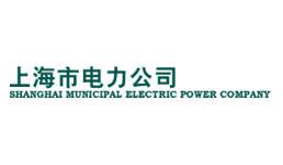 上海市电力公司
